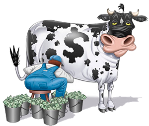 cow_money